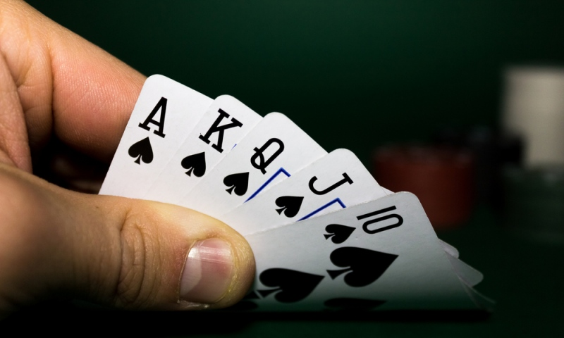 5 Reasons Why You Should Play Rummy in Freetime